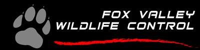 Fox Valley Wildlife Control